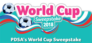 PDSA World Cup Sweepstake
