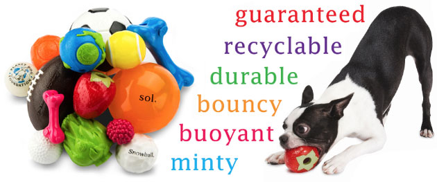 Planet Dog Orbee-Tuff dog toys
