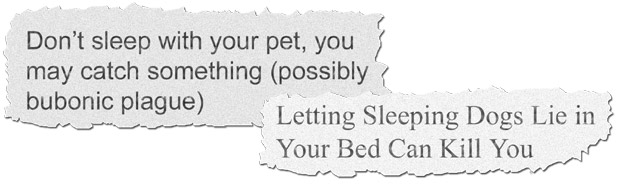 the media headlines saying sleeping with pets is bad for our health