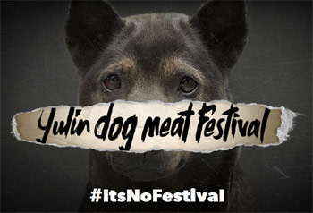 Yulin It's No Festival