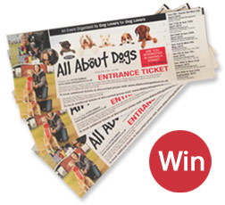 Win tickets to All About Dogs