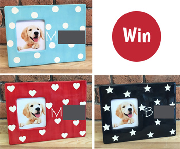 Win a dog photo frame