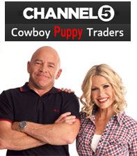 Cowboy Puppy Traders Channel 5