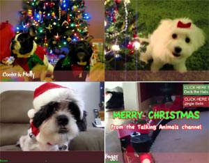 Animals Sing The Twelve Days of Christmas