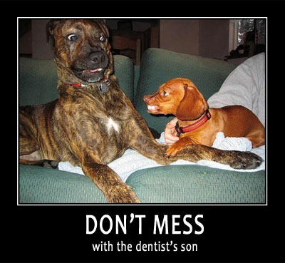 funny dog teeth