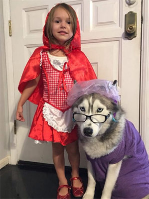 halloween red riding hood with dog granny