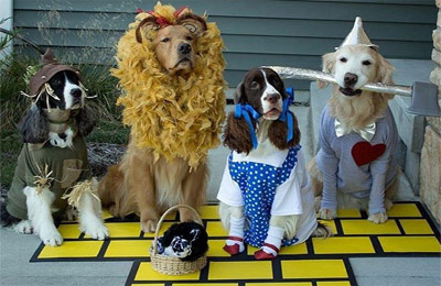 dogs dressed as Wizard of Oz characters