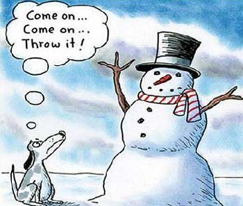 funny dog waiting for snowman to throw stick arm