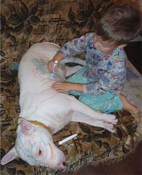 kid drawing on a dog