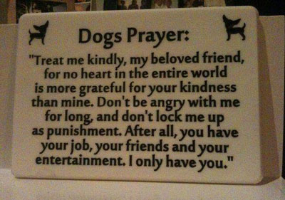 Dogs Prayer I Only Have You