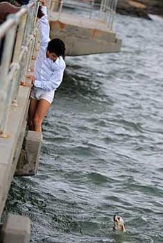 man dangles over bridge to rescue dog