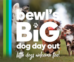 Bewl's Big Dog Day Out