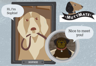 MuttMate Dog Social Networking Website