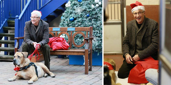 Paul O'Grady: For the Love of Dogs Christmas 2014