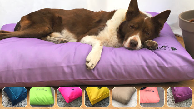 Miaboo Luxury Dog Bed Cushion - Bold