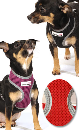 mesh reflective dog harness
