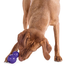Orbee-Tuff Diamond Plate Double-Tuff dog chew and treat toy