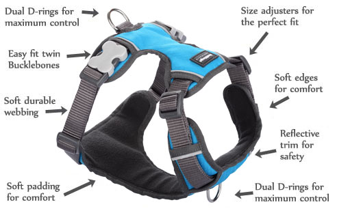 Padded Blue Dog Harness features
