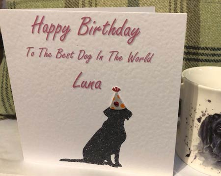 Personalised Birthday Card for Dogs