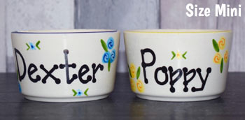 Personalised Dog Bowls Mini size