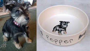 personalised dog bowl dog portrait