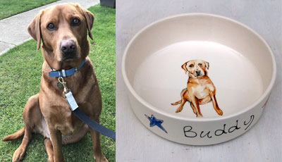 personalised dog portrait bowl