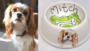 spaniel bowl personalised with dog's name