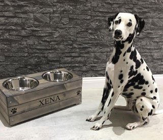 Personalised wooden double dog bowl feeder