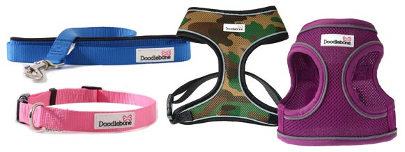 Plain bold Doodlebone dog collars, leads and harness