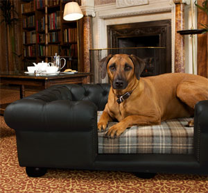 Balmoral Black Leather Dog Sofa