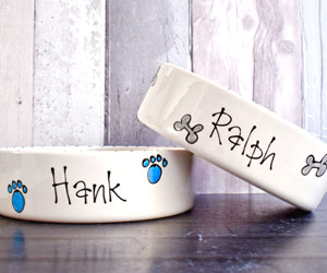 Ceramic Dog Bowl With Name - Whimsical Straight