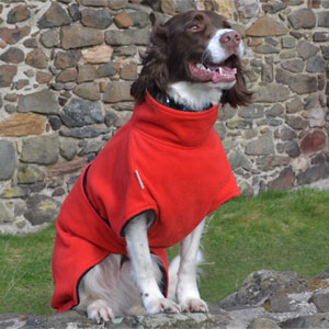 Freckles Dog Drying Coat - Ultimate