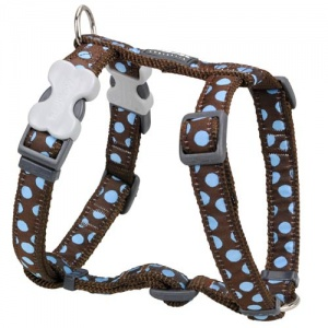 Red Dingo Dog Harness Blue Spots on Brown
