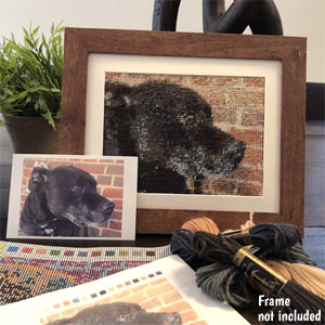 Your Dog Photo Tapestry Kit