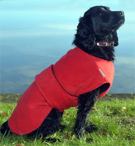 Dog Drying Coat - Underbelly