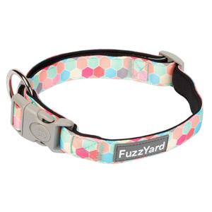 FuzzYard Dog Collar - The Hive
