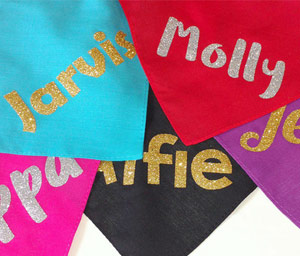 Dazzle Personalised Dog Bandanas