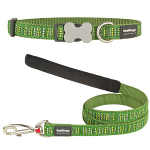 Green Lotzadotz Collar & Lead Set