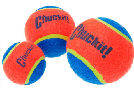 Dog Tennis Balls | Chuckit Tennis Ball For Dogs | D for Dog