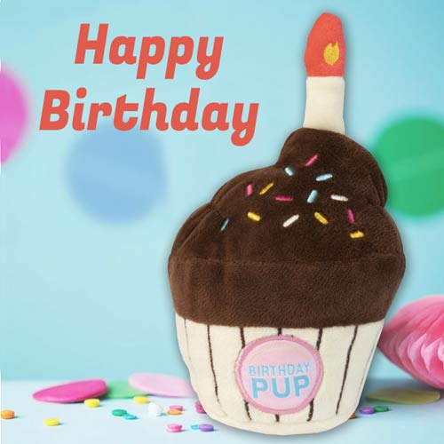 Enjoyable Dog Birthday Cake Toy Fuzzyard Chocolate Cupcake D For Dog Funny Birthday Cards Online Overcheapnameinfo