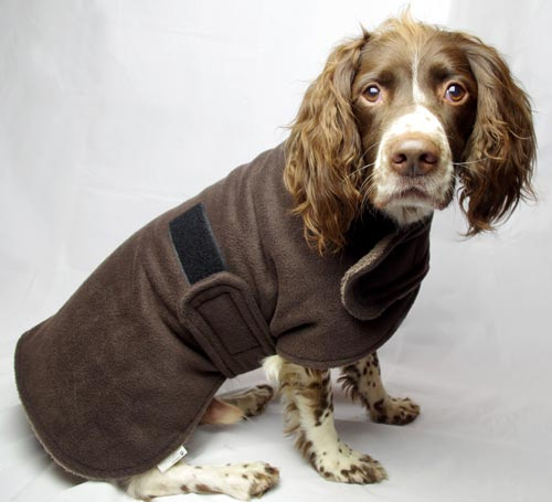 Freckles Dog Drying Coat Towel Microfibre Towelling