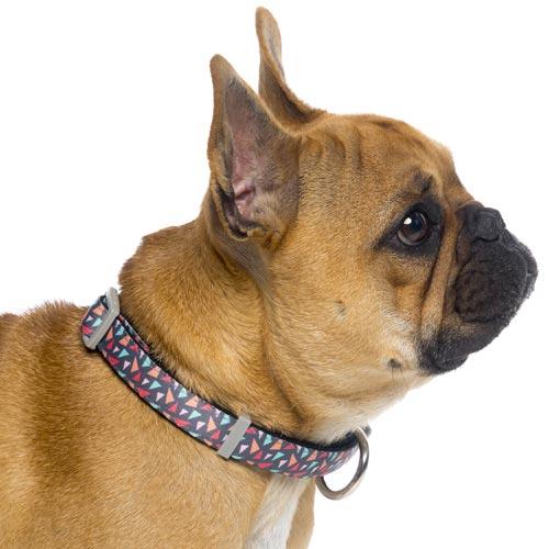 Rad Lightweight Dog Lead By Fuzzyard D For Dog