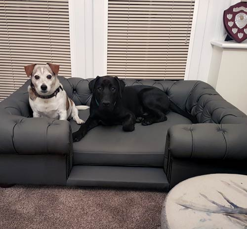 Balmoral Grey Real Leather Dog Sofa