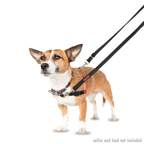 Halti Training Harness For Dogs Who Pull