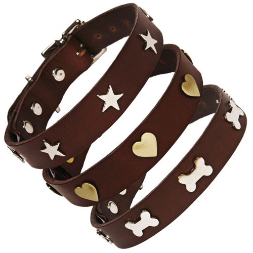 Studded Brown Leather Dog Collar Uk Made D For Dog