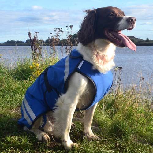 dog jackets waterproof uk