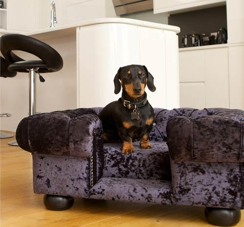 Balmoral Ebony Velvet Luxury Dog Sofa
