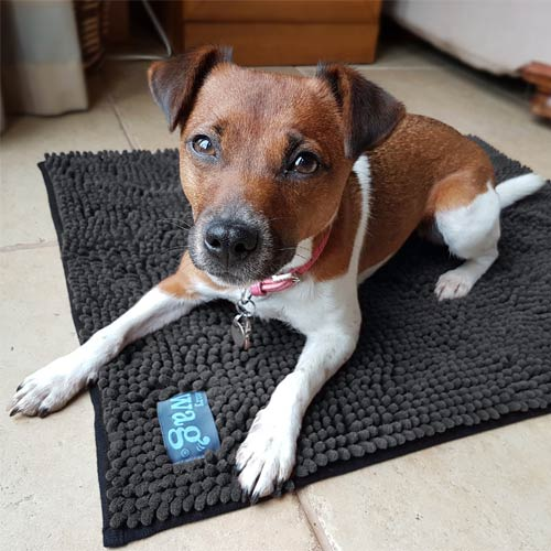 Travel Dog Bed >> Microfibre Noodle Pet Drying Mat | Henry Wag | D for Dog