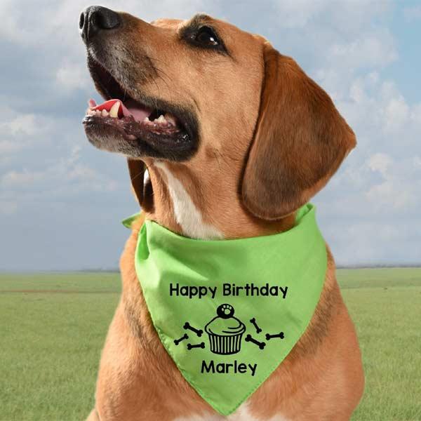 Personalised Dog Birthday Bandana Happy Birthday