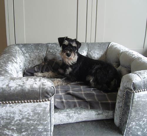 Sandringham Crushed Velvet Luxury Dog Bed In Silver